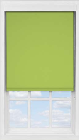 Premium Roller Blind in Fern Blackout