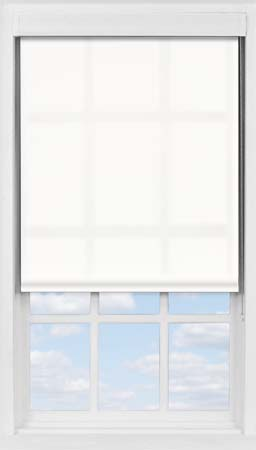 Premium Roller Blind in Blossom White Translucent