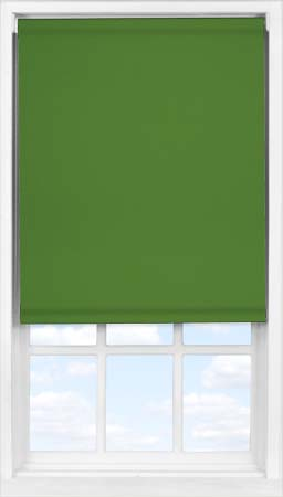 Easifit Roller Blind in Ivy Blackout