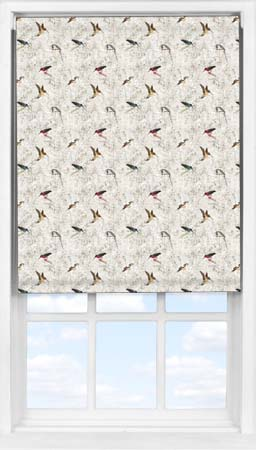 Easifit Roller Blind in The Gathering Translucent