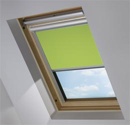 Solar Skylight in Fern Blackout