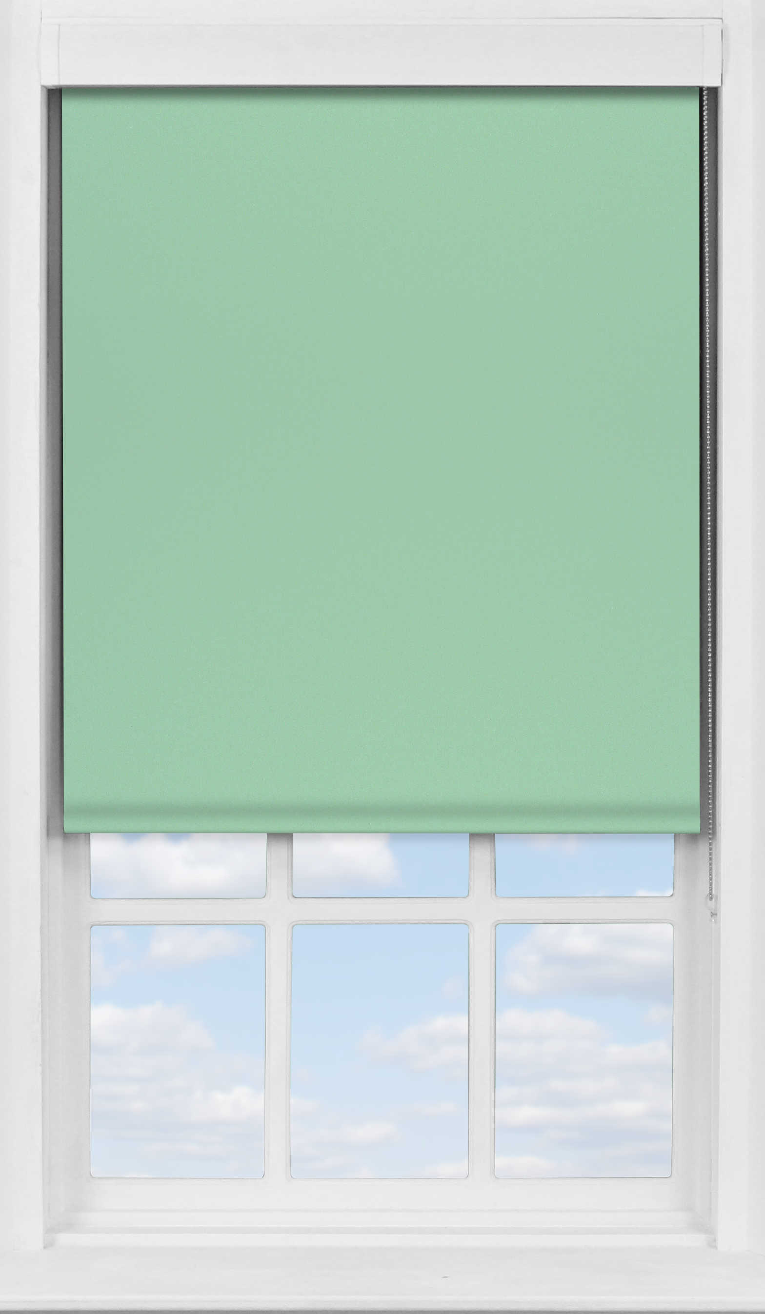 Premium Roller Blind in Duck Egg Blackout