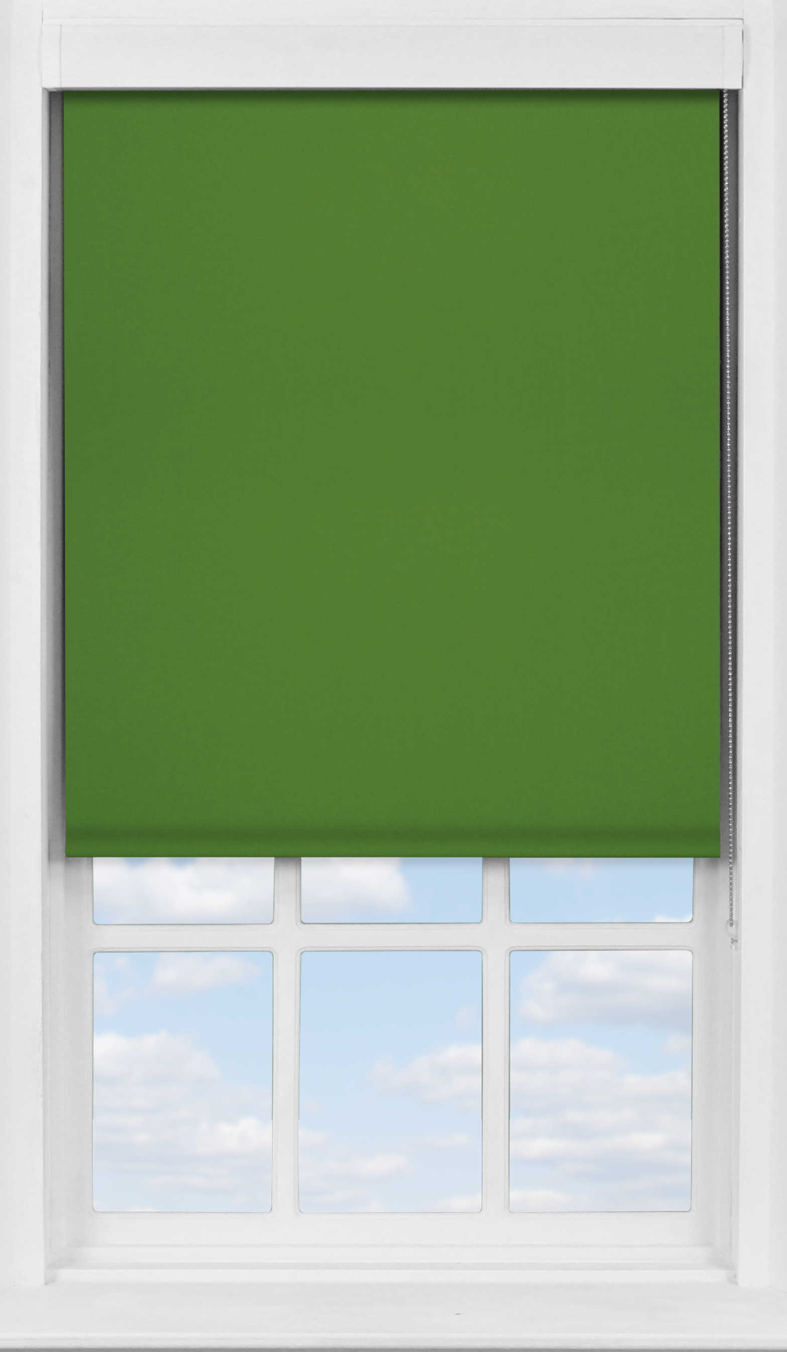 Premium Roller Blind in Moss Blackout
