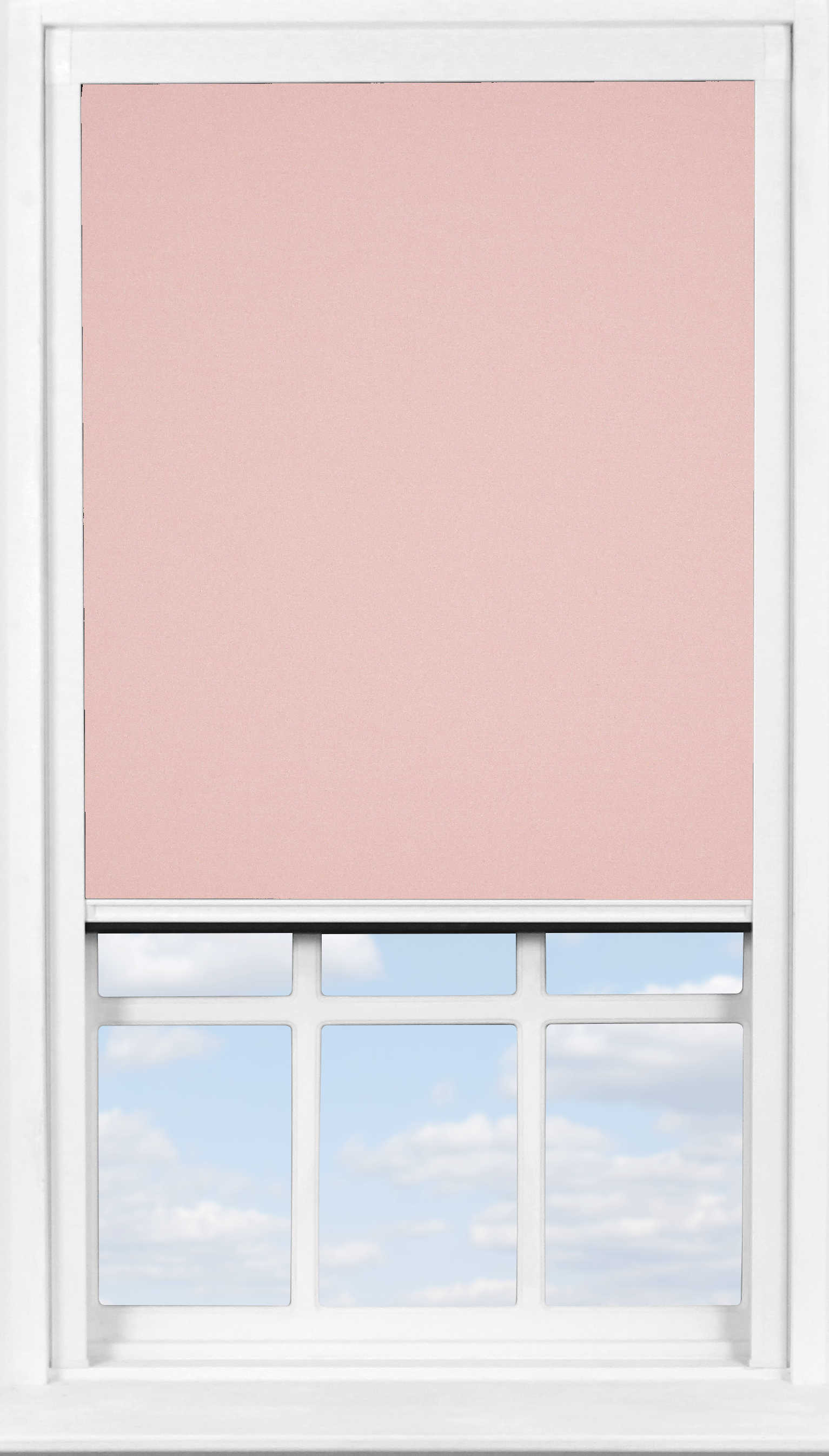 BlocOut™ in Lychee Blush