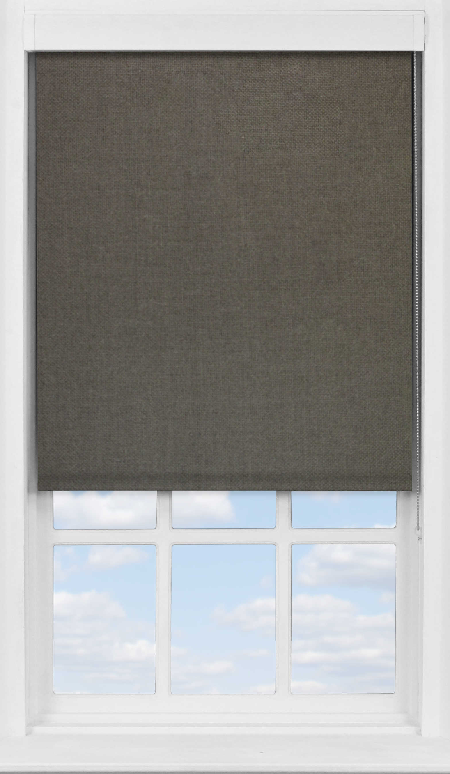 Premium Roller Blind in Bare Earth Translucent