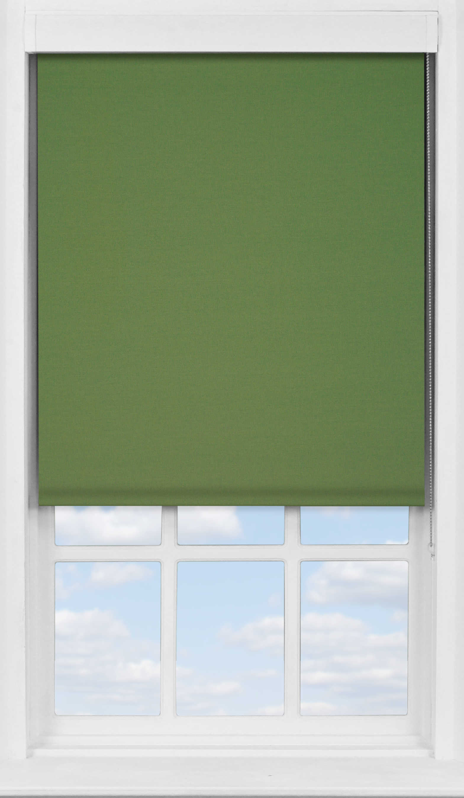 Premium Roller Blind in Rich Olive Blackout