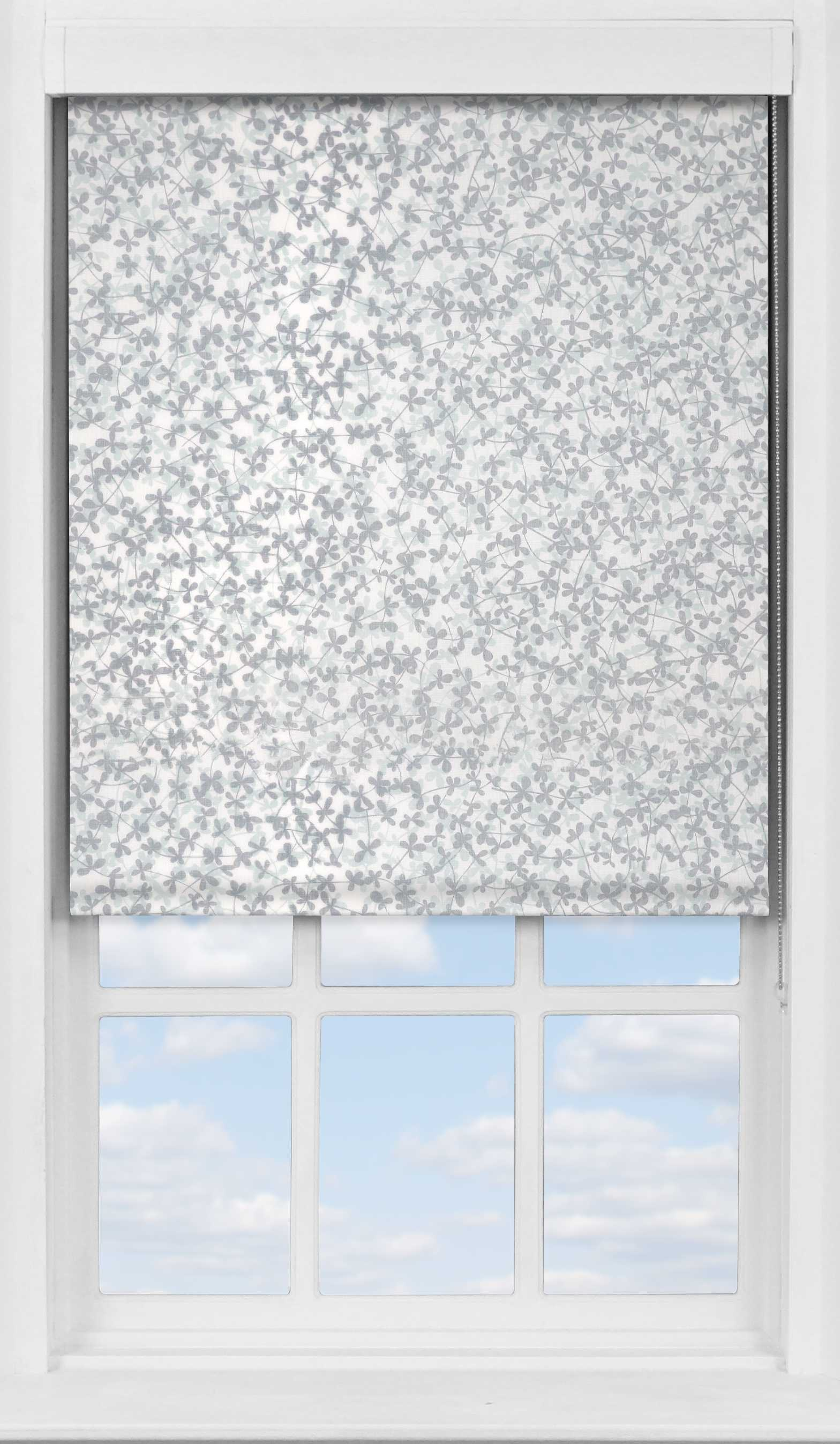 Premium Roller Blind in Meadow Winter Transparent