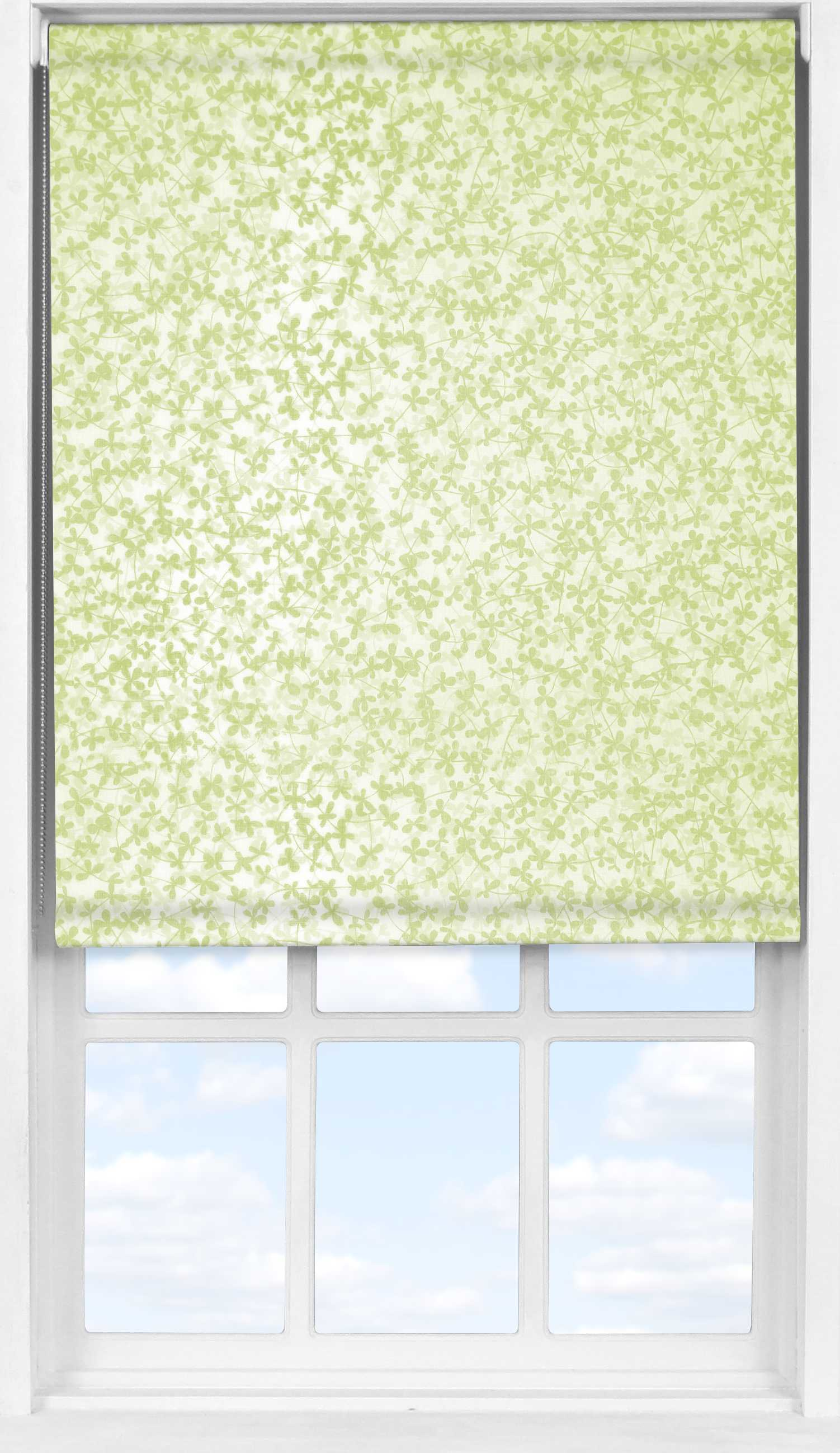 Easifit Roller Blind in Meadow Spring Transparent