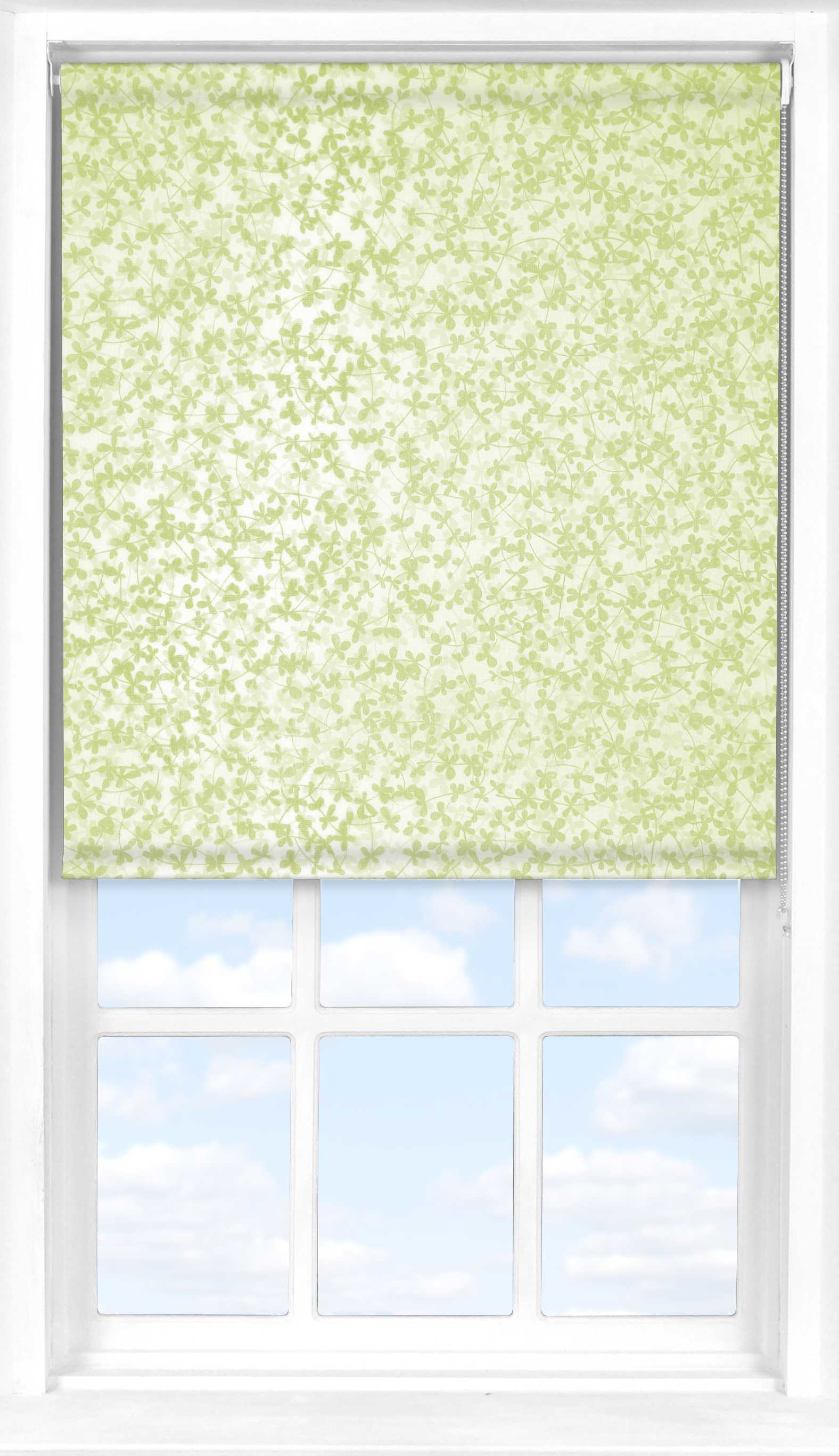 Roller Blind in Meadow Spring Transparent
