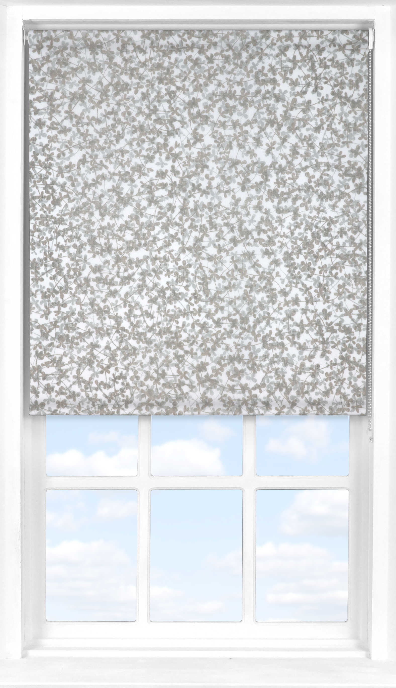 Roller Blind in Meadow Transparent
