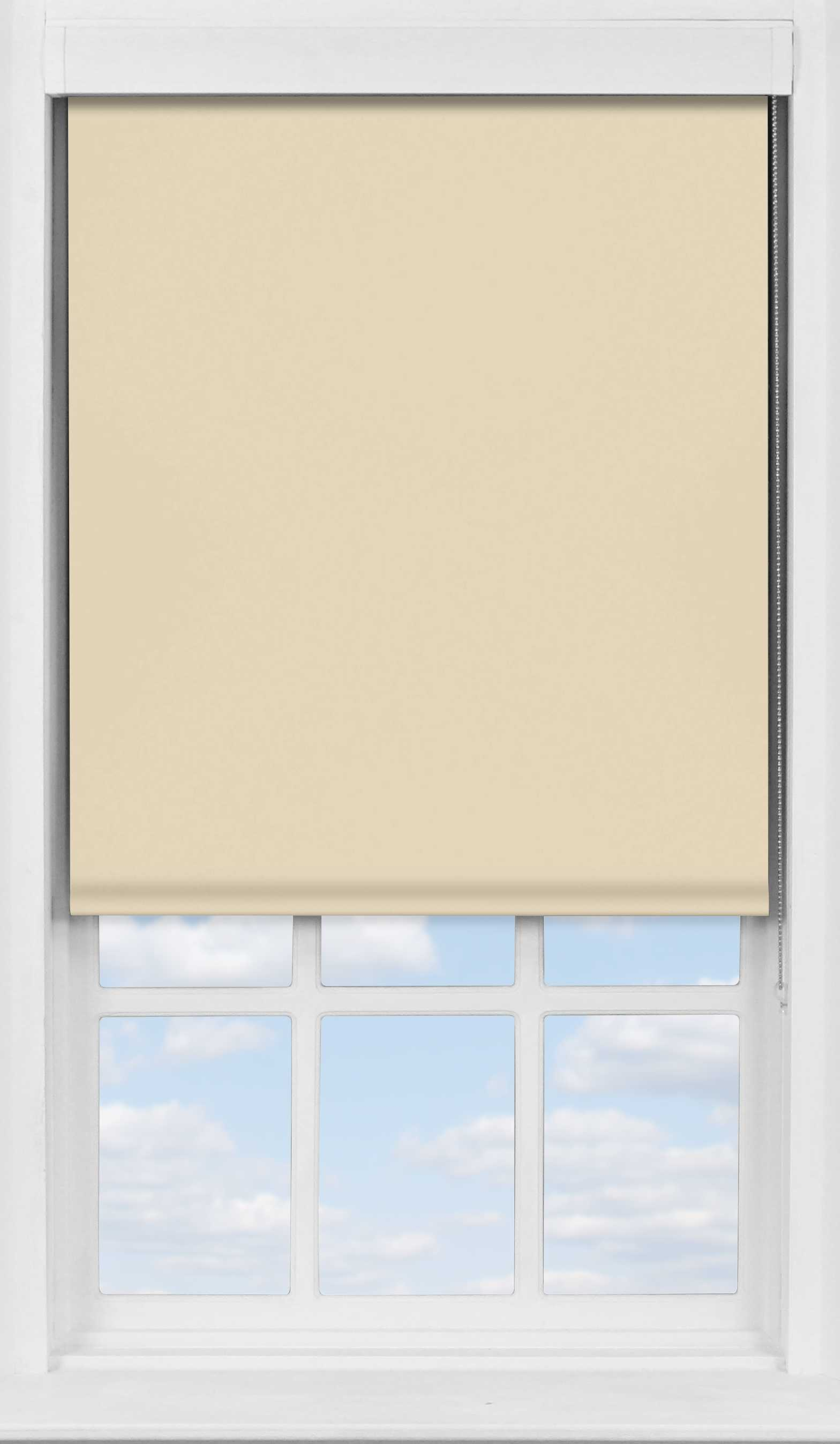 Premium Roller Blind in Coffee Translucent