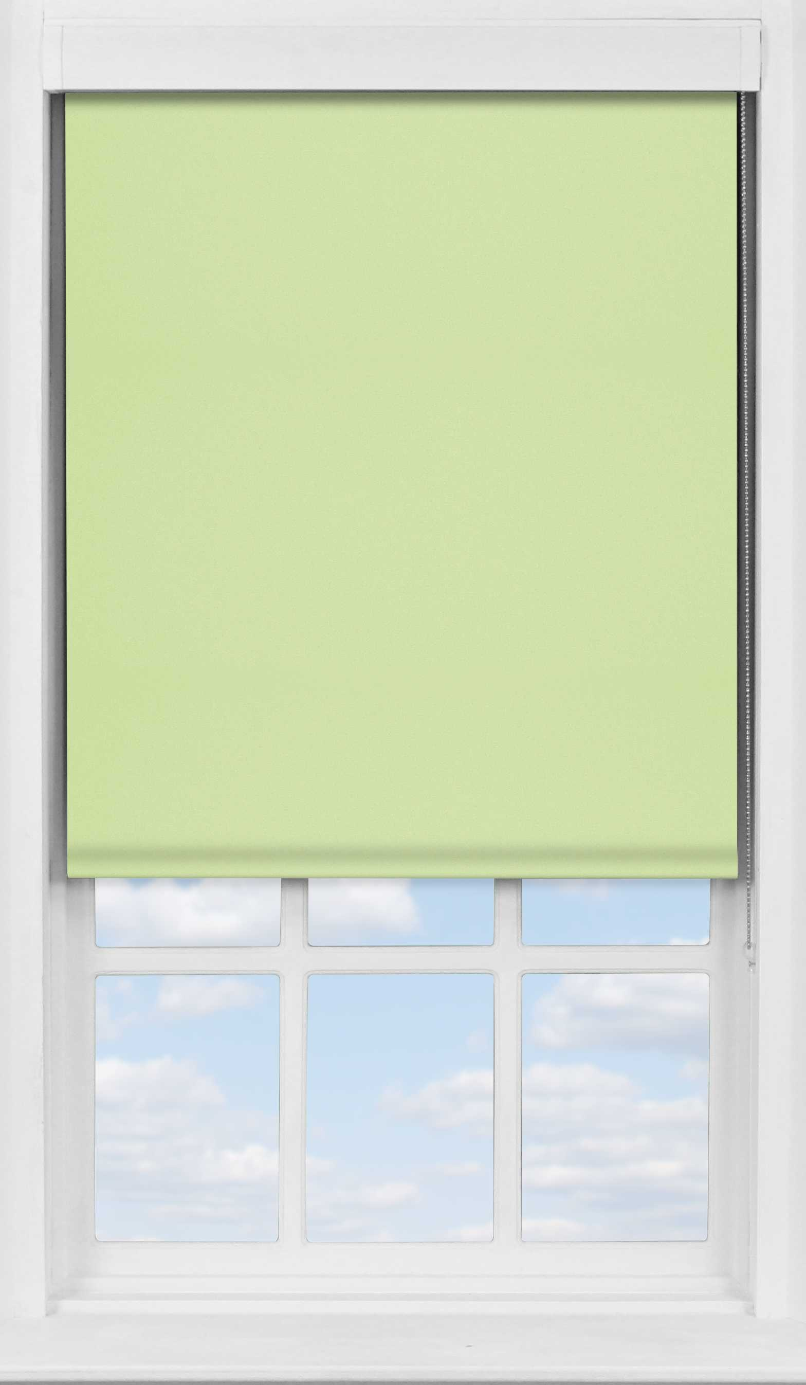Premium Roller Blind in Light Green Blackout