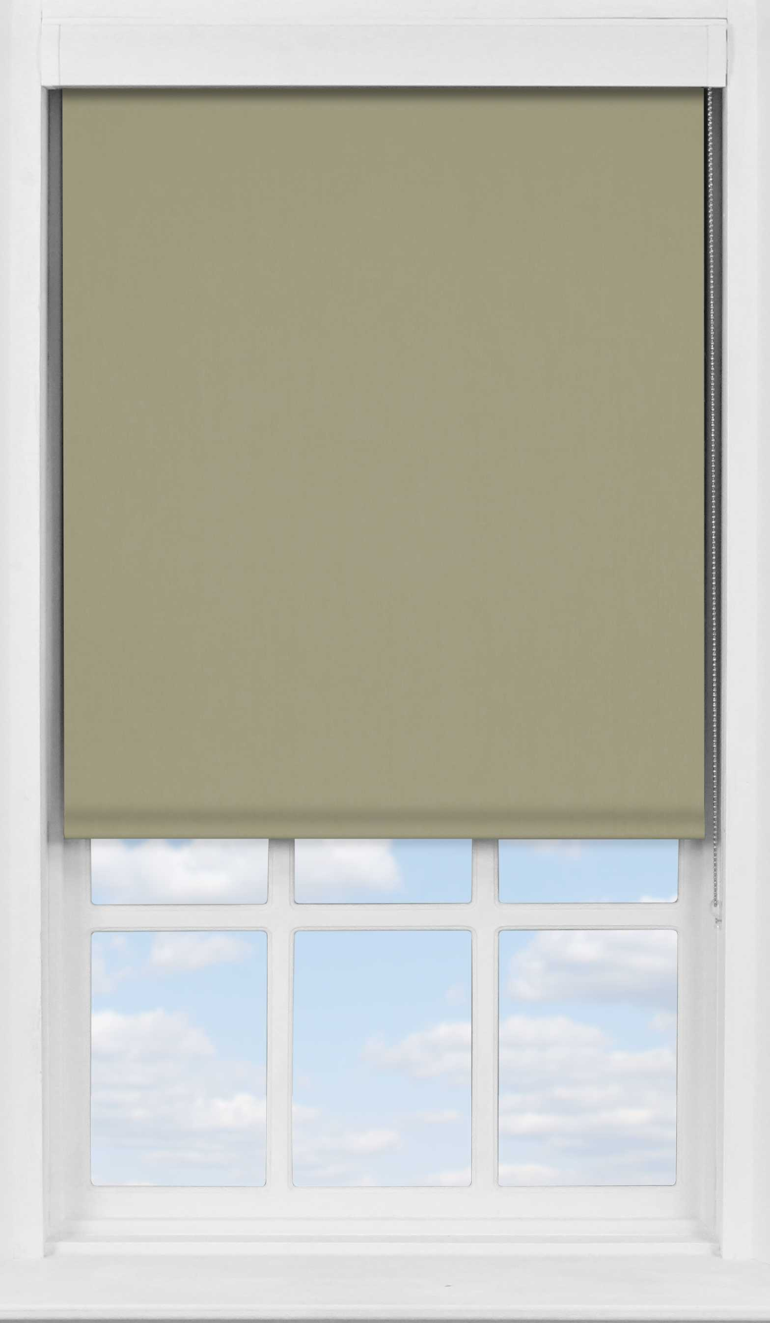 Premium Roller Blind in Pale Oak Translucent