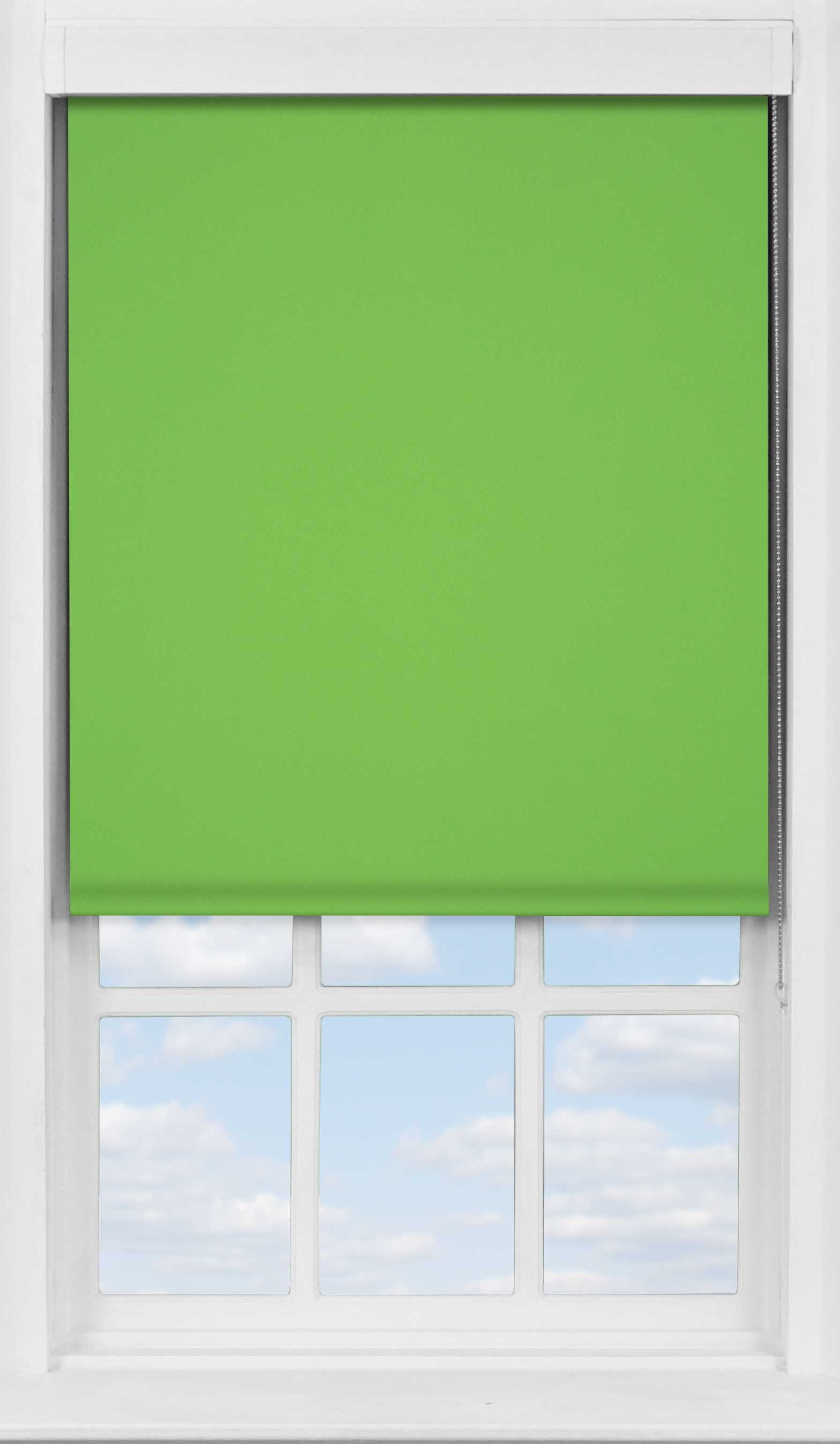 Premium Roller Blind in Grass Green Translucent